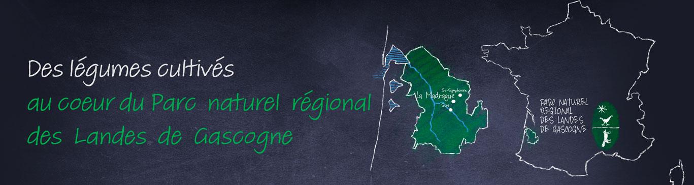 La Madrague au coeur du Parc naturel régional des Landes de Gascogne